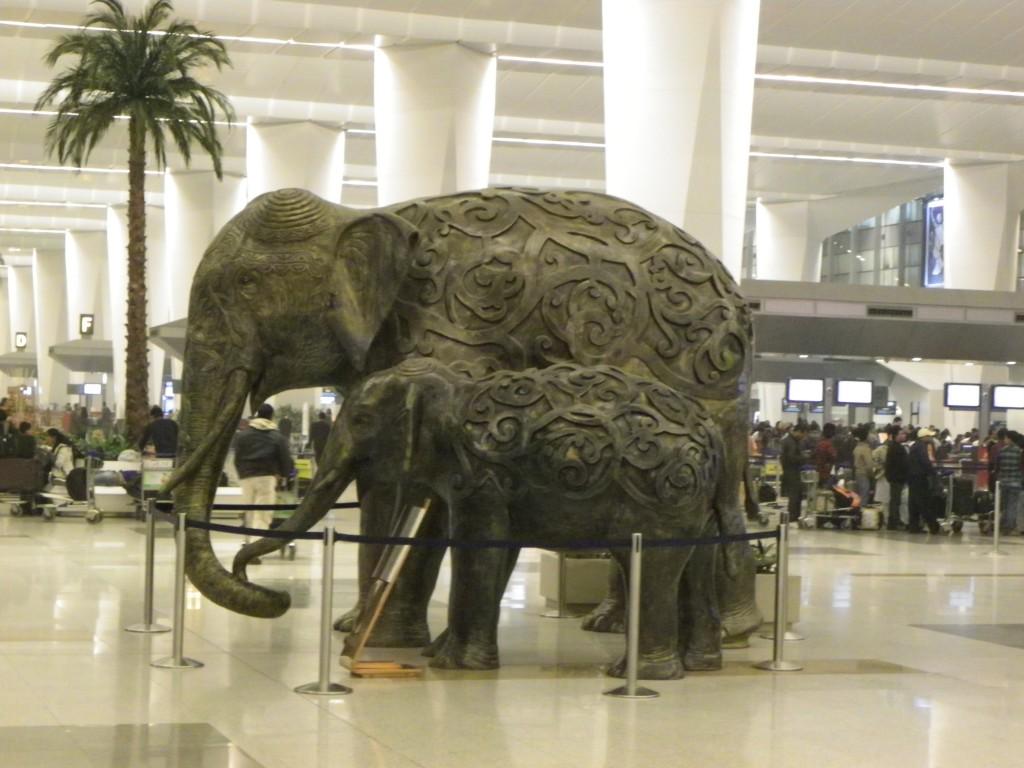 LEs éléphants aéroport new delhi